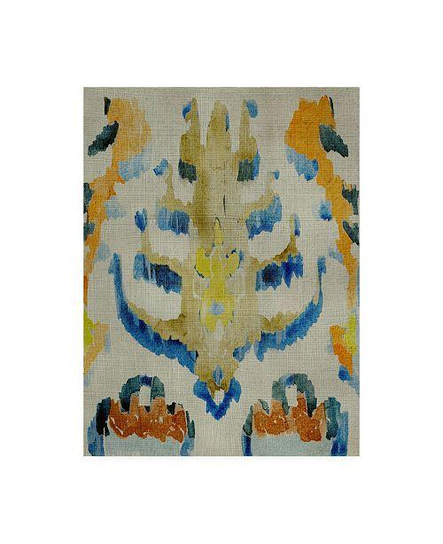 "Trademark Global Chariklia Zarris Bohemian Ikat IV Canvas Art - 27"" x 33.5"""