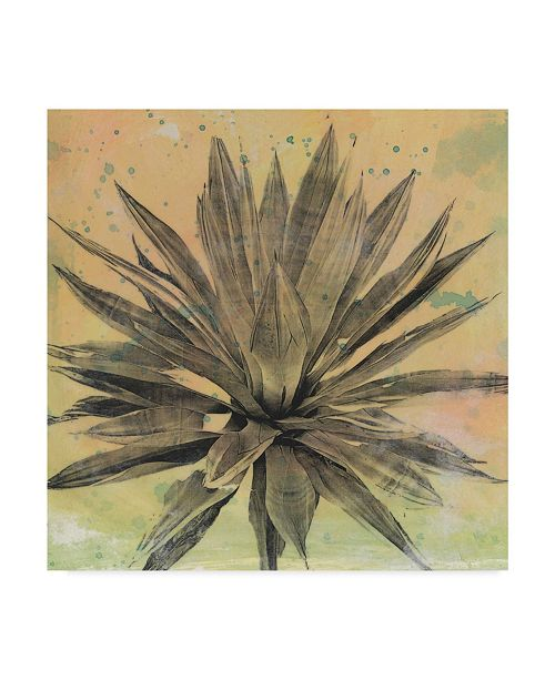 "Trademark Global Naomi Mccavitt Desert Dreams I Canvas Art - 15"" x 20"""