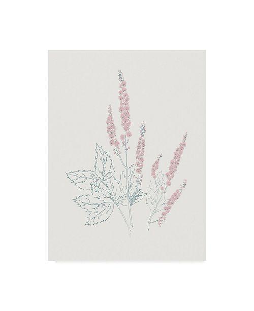 "Trademark Global Wild Apple Portfolio Flowers on White VII Contemporary Canvas Art - 37"" x 49"""