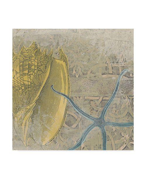 "Trademark Global June Erica Vess Coastal Cameo VII Canvas Art - 27"" x 33"""