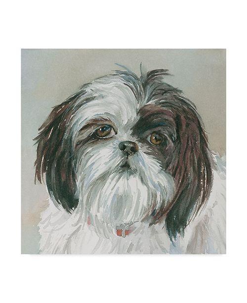 "Trademark Global Edie Fagan Payton Shih Tzu Canvas Art - 27"" x 33"""