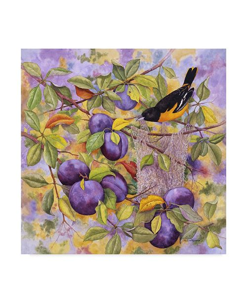 """Trademark Global Marcia Matcham Oriole and Plums Canvas Art - 27"""" x 33"""""""