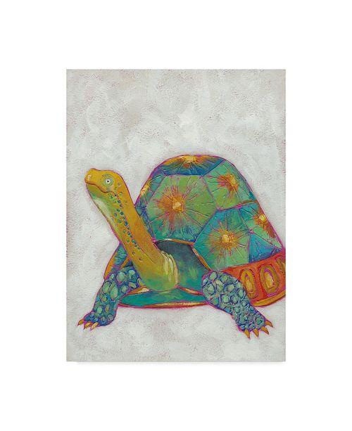 "Trademark Global Chariklia Zarris Turtle Friends II Canvas Art - 37"" x 49"""