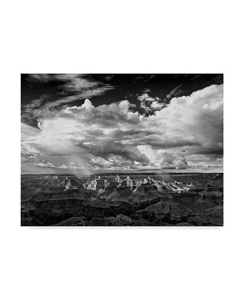 "Trademark Global David Drost Black and White Desert View IV Canvas Art - 37"" x 49"""