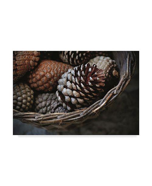 "Trademark Global Christine Sainte-Laudy Winter Scent Canvas Art - 20"" x 25"""