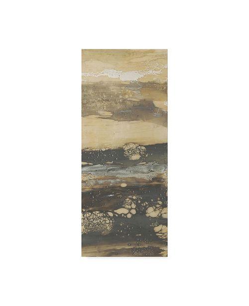 "Trademark Global Jennifer Goldberger Terre Umber III Canvas Art - 37"" x 49"""