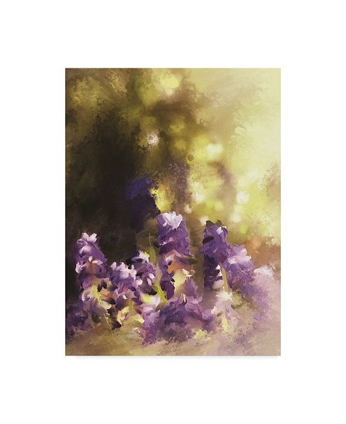 "Trademark Global Lois Bryan Impressions of Muscari Canvas Art - 20"" x 25"""