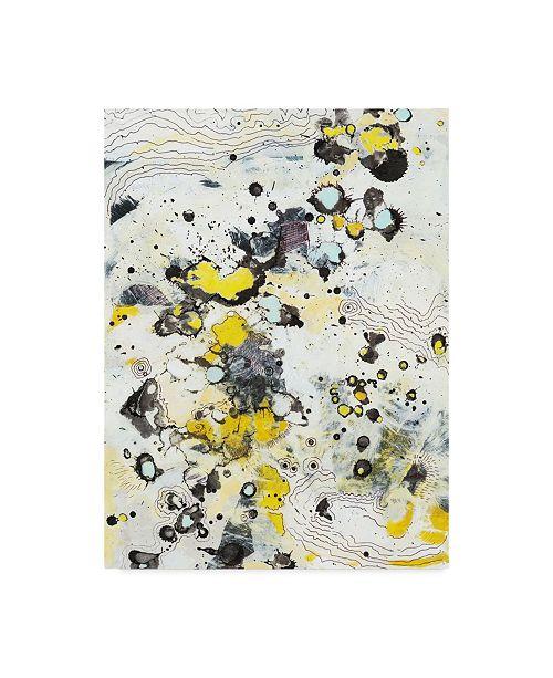 """Trademark Global Jodi Fuchs Topo I Canvas Art - 15"""" x 20"""""""