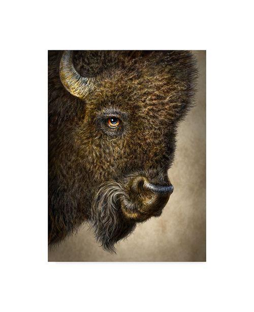 "Trademark Global Patrick Lamontagne Bison Totem Canvas Art - 15"" x 20"""