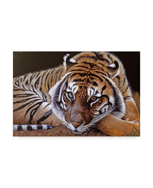 "Trademark Global Pip Mcgarry Sumatran Tiger Resting Canvas Art - 15"" x 20"""