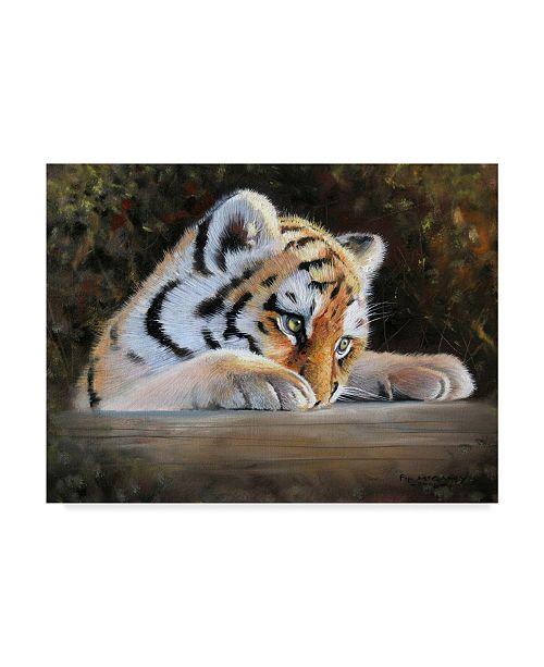 "Trademark Global Pip Mcgarry Tiger Cub Face Canvas Art - 37"" x 49"""