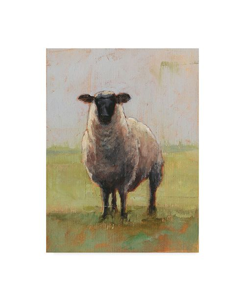 """Trademark Global Ethan Harper Away from the Flock I Canvas Art - 37"""" x 49"""""""