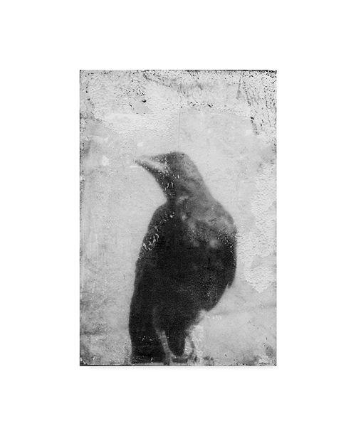 "Trademark Global Ingrid Blixt B&W Flight III Canvas Art - 15"" x 20"""