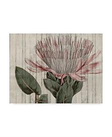 "Studio W Rustic Floral IV Canvas Art - 15"" x 20"""