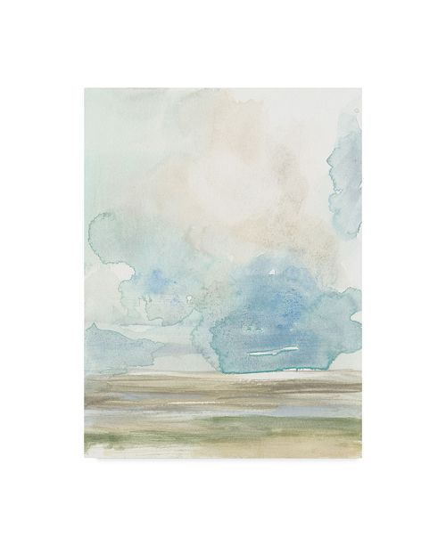 "Trademark Global Jennifer Goldberger Clouds Over the Marsh I Canvas Art - 37"" x 49"""