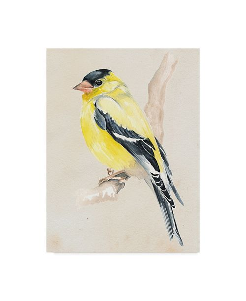 """Trademark Global Jennifer Paxton Parker Little Bird on Branch III Canvas Art - 15"""" x 20"""""""