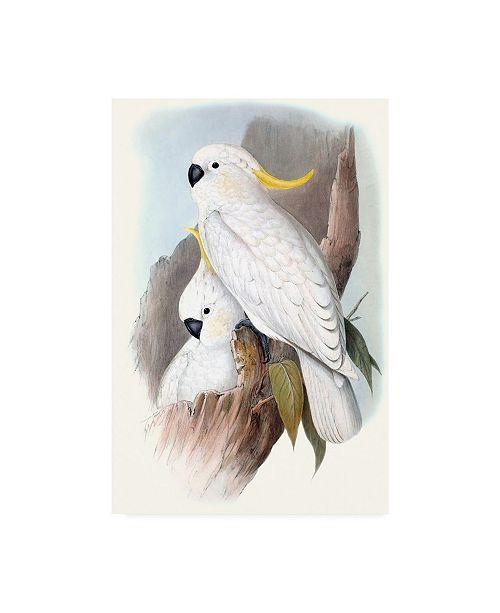 "Trademark Global John Gould Pastel Parrots V Canvas Art - 15"" x 20"""