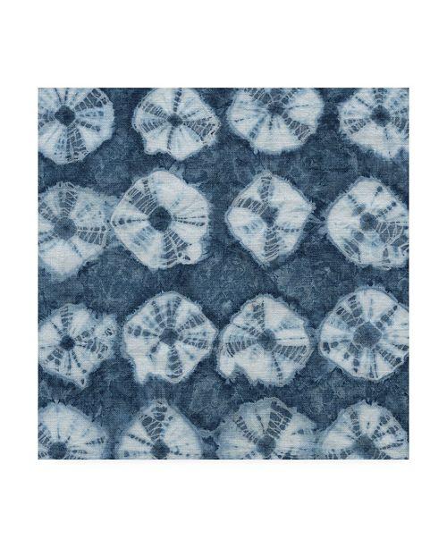 "Trademark Global Chariklia Zarris Sea Cloth II Canvas Art - 15"" x 20"""
