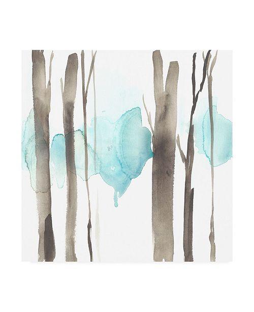 "Trademark Global Jennifer Goldberger Snow Line V Canvas Art - 15"" x 20"""