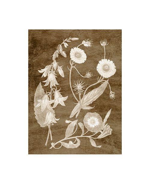 "Trademark Global Vision Studio Botanical in Taupe III Canvas Art - 20"" x 25"""