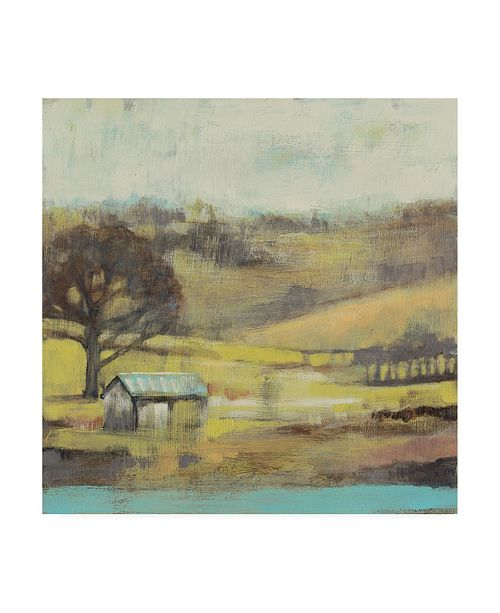 "Trademark Global Jennifer Goldberger Pastoral Mist I Canvas Art - 20"" x 25"""