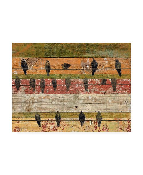 "Trademark Global Irena Orlov Birds on Wood VI Canvas Art - 20"" x 25"""