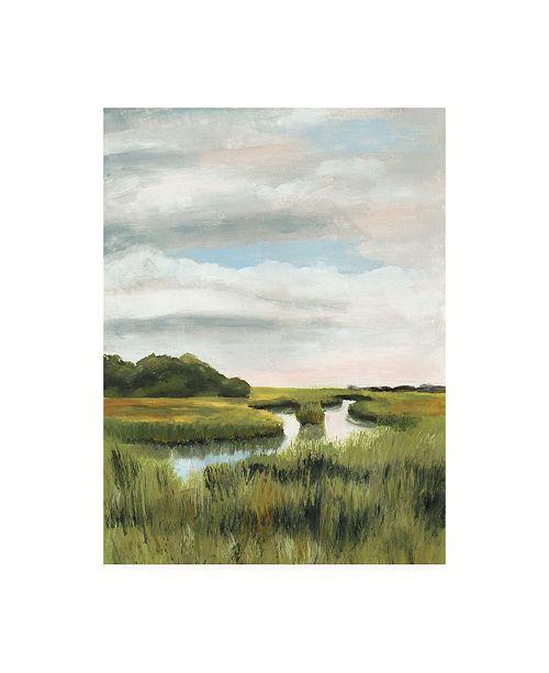 "Trademark Global Naomi Mccavitt Marsh Landscapes I Canvas Art - 20"" x 25"""