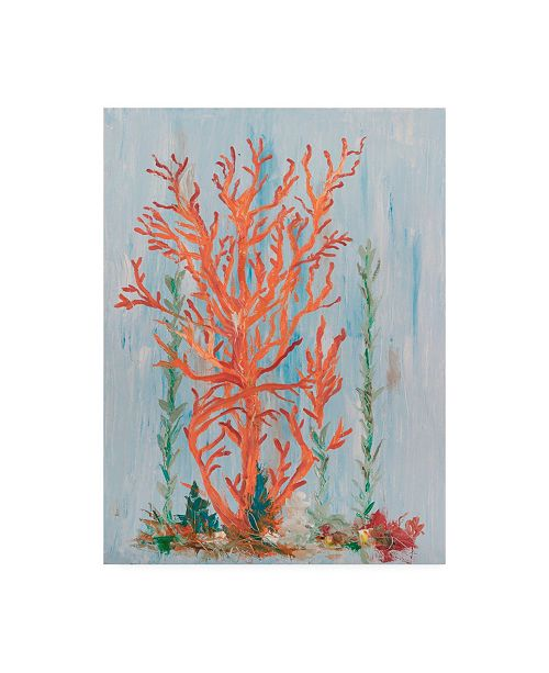 "Trademark Global Olivia Brewington Painterly Coral II Canvas Art - 20"" x 25"""