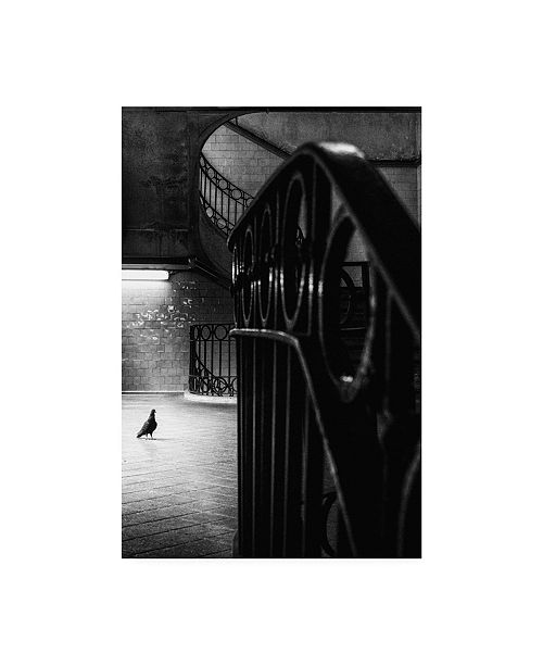 """Trademark Global Laura Mexia Big Bird in a Small Cage Canvas Art - 15"""" x 20"""""""