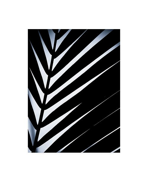 "Trademark Global Incado Close up VI Canvas Art - 19.5"" x 26"""