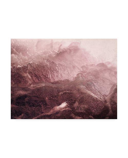 """Trademark Global Design Fabrikken Pink Motion Fabrikken Canvas Art - 36.5"""" x 48"""""""