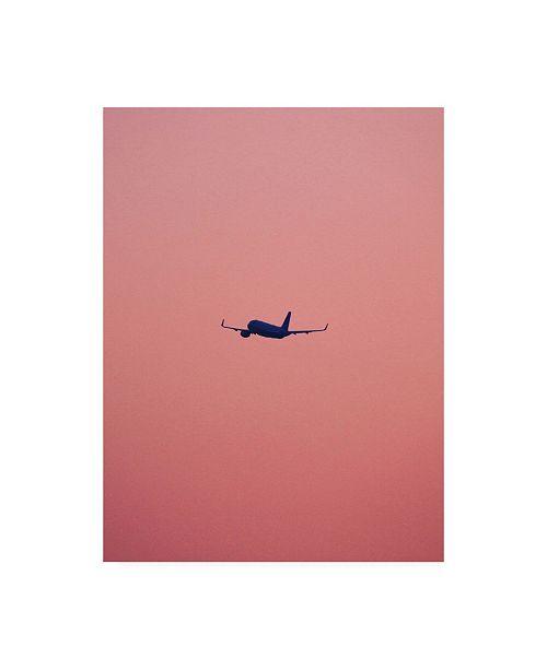 """Trademark Global Design Fabrikken Pink Flight Fabrikken Canvas Art - 27"""" x 33.5"""""""