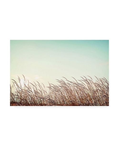 "Trademark Global PhotoINC Studio Retro Grass Canvas Art - 19.5"" x 26"""
