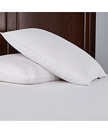Pillow Standard/Queen Set of 2
