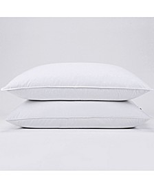 Pillow King Set of 2