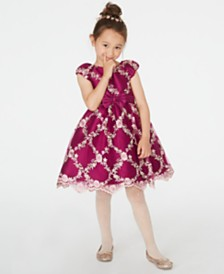 Rare Editions Toddler Girls Embroidered Fit & Flare Dress