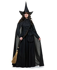 Women's Wicked Witch Adult Costume