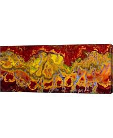 """Crayola Jasper, Primo Jasper, California by Darrell Gulin Danita Delimont Canvas Art, 35"""" x 16"""""""