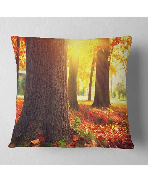 "Design Art Designart Autumn Trees In The Sunlight Landscape Printed Throw Pillow - 16"" X 16"""