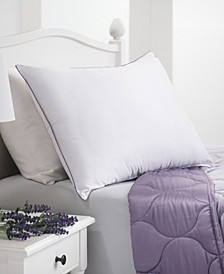 Dream Infusion Lavender Scented Soft Touch Pillow, Standard