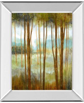 Soft Forest I by Nan Mirror Framed Print Wall Art - 22