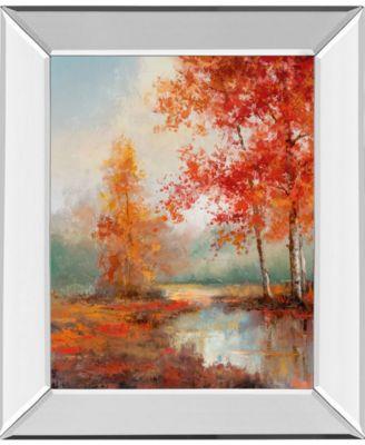 "Autumns Grace II by T.C Chiu Mirror Framed Print Wall Art - 22"" x 26"""