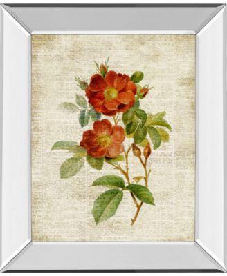 "Roses on Newsprint Il by Lanie Loreth Mirror Framed Print Wall Art - 22"" x 26"""