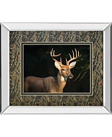 """White Tail Buck by Tony Campbell Double Matted Mirror Framed Print Wall Art - 34"""" x 40"""""""
