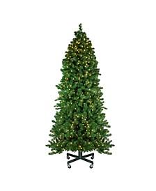7.5' Pre-Lit Olympia Pine Artificial Christmas Tree - Warm White LED Lights