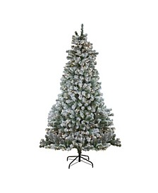 7.5' Pre-Lit Flocked Winema Pine Artificial Christmas Tree - Clear Lights