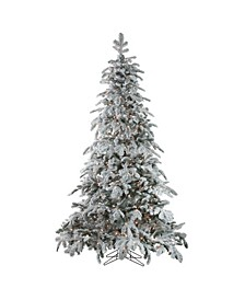7.5' Pre-Lit Flocked Whistler Noble Fir Artificial Christmas Tree - Clear Lights