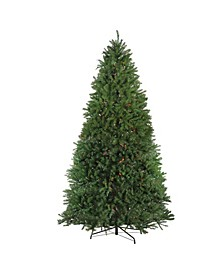 12' Pre-Lit Northern Pine Full Artificial Christmas Tree - Multi Lights
