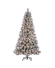 7.5-Foot High Flocked Pre-Lit Hard Mixed Needle Boise Pine with Warm White Lights