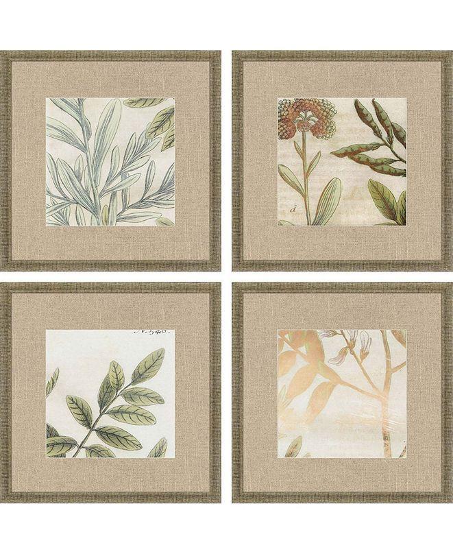 """Paragon Garden II Framed Wall Art Set of 4, 15"""" x 15"""""""